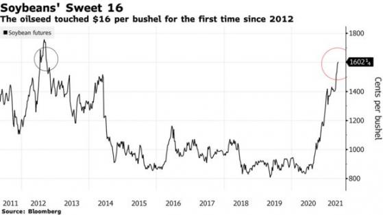国际粮食紧缺担忧加剧 CBOT大豆价格升至八年新高