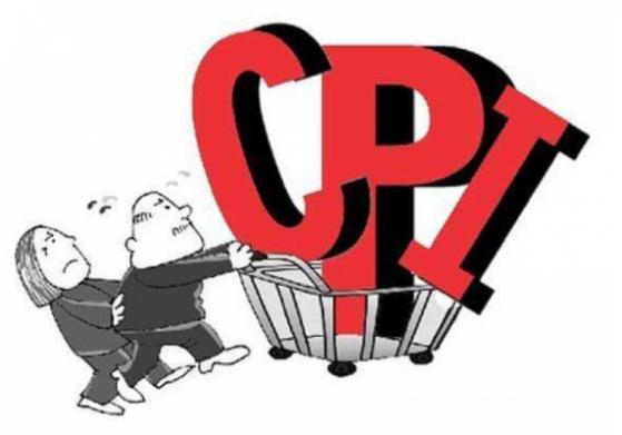 8月CPI环比同比涨幅稳中有升,下半年通胀有望小幅回落
